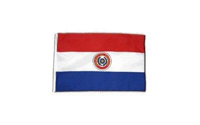 Fahne Flagge Paraguay 30 x 45 cm