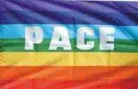 Flagge 90 x 150 : PACE mit Ösen