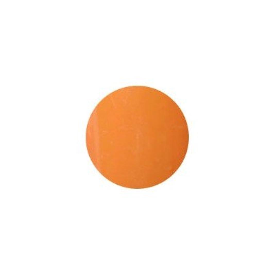 同情途方もない弱めるプティール カラージェル ラヴィング L17 オリエンタルオレンジ