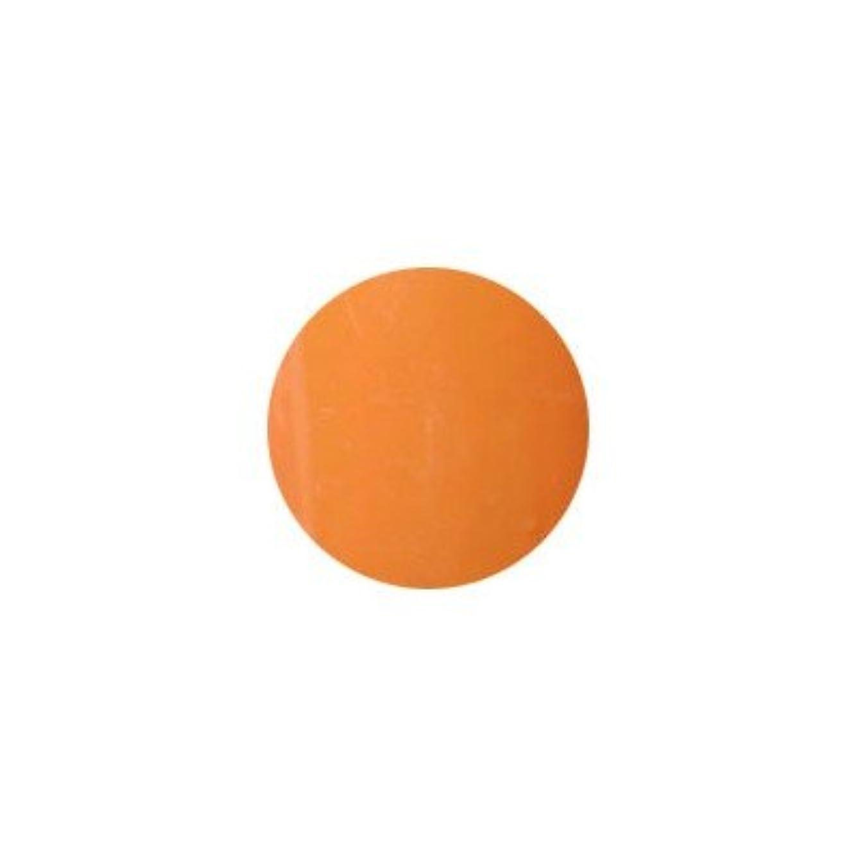 影のあるトランジスタ悲劇プティール カラージェル ラヴィング L17 オリエンタルオレンジ
