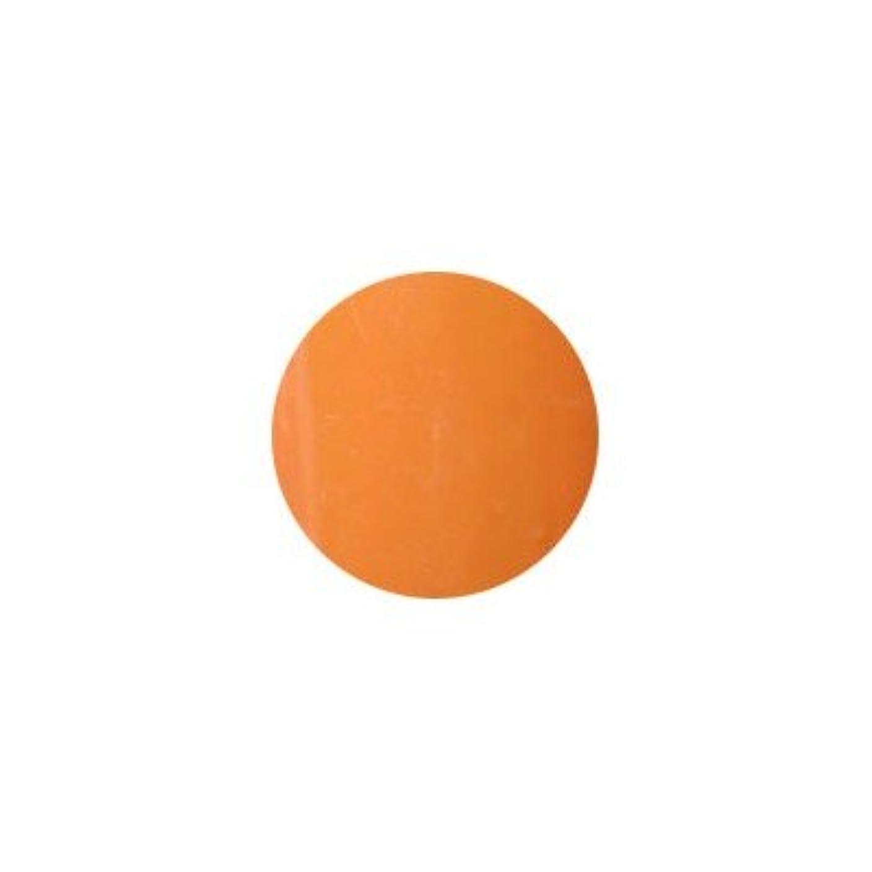 アラバマそれにもかかわらず闇プティール カラージェル ラヴィング L17 オリエンタルオレンジ