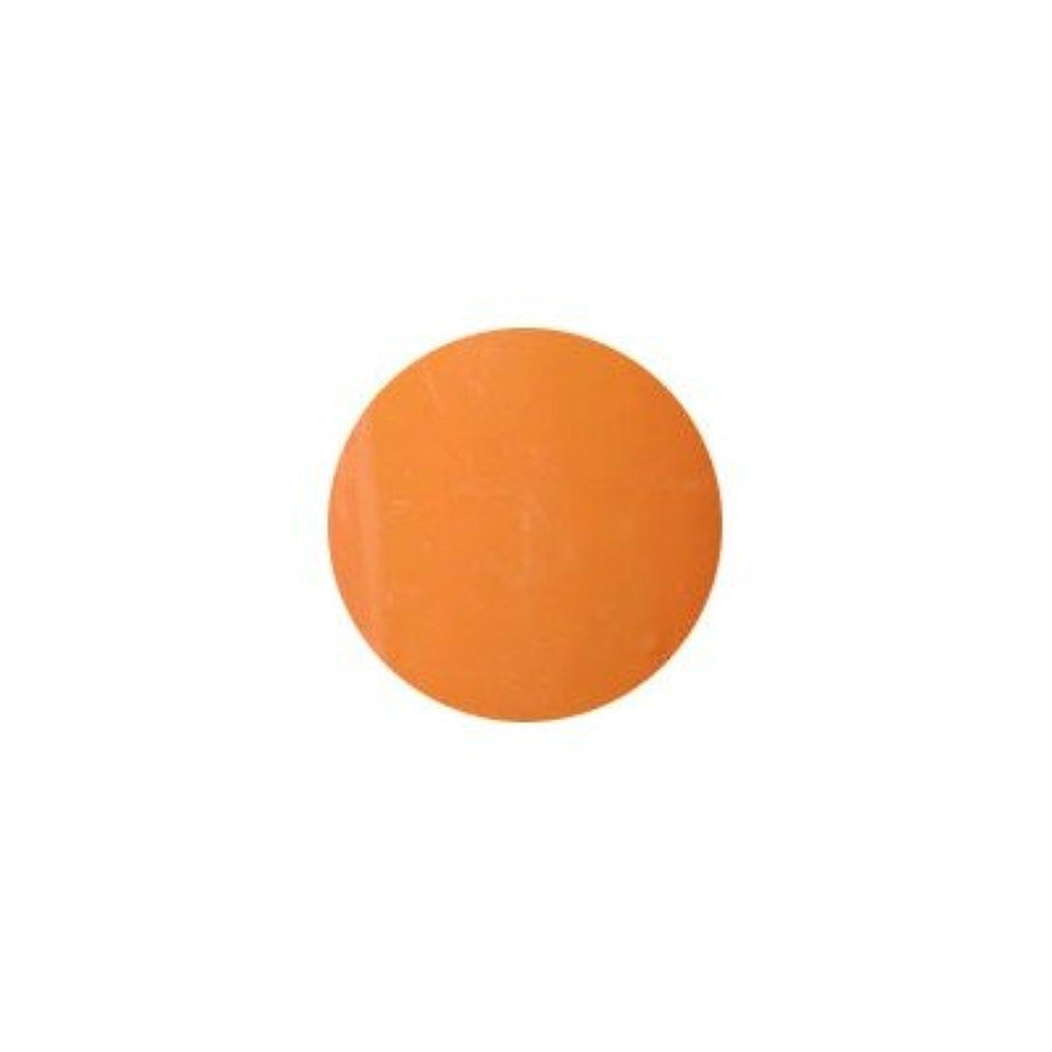 偏心火薬束ねるプティール カラージェル ラヴィング L17 オリエンタルオレンジ