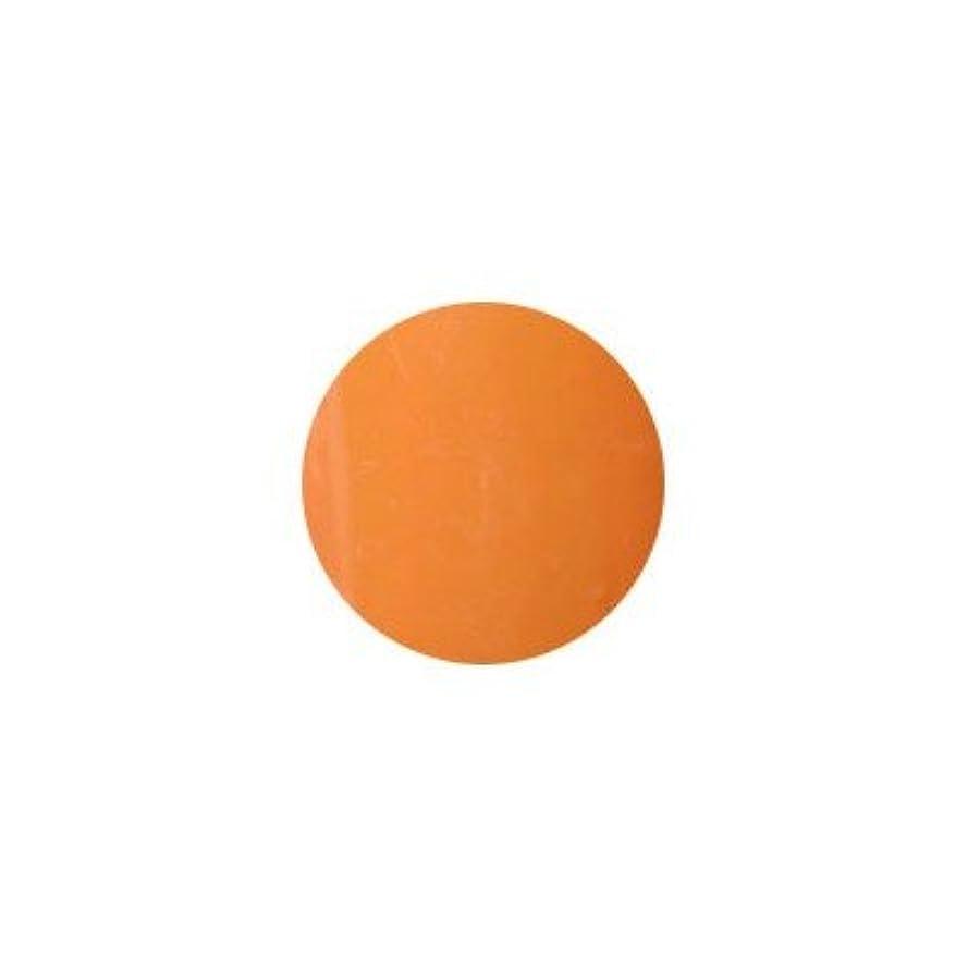 説得ヘッジ遊びますプティール カラージェル ラヴィング L17 オリエンタルオレンジ