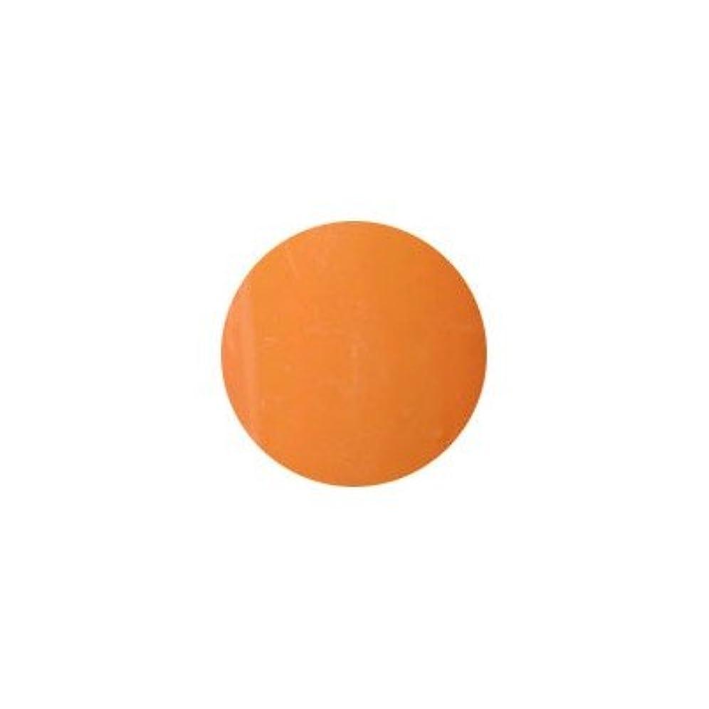 ローブ火山のハッチプティール カラージェル ラヴィング L17 オリエンタルオレンジ