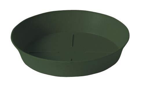 Plastecnic Sottovaso Export Verde 12cm