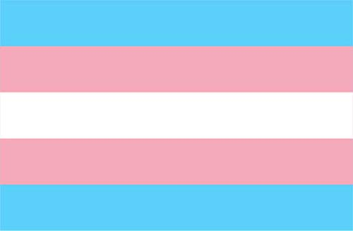 Michael & Rene Pflüger Barmstedt - 84x54 mm - Premium Autoaufkleber Fahne/Flagge Transgender Pride Sticker Aufkleber Auto Motorrad