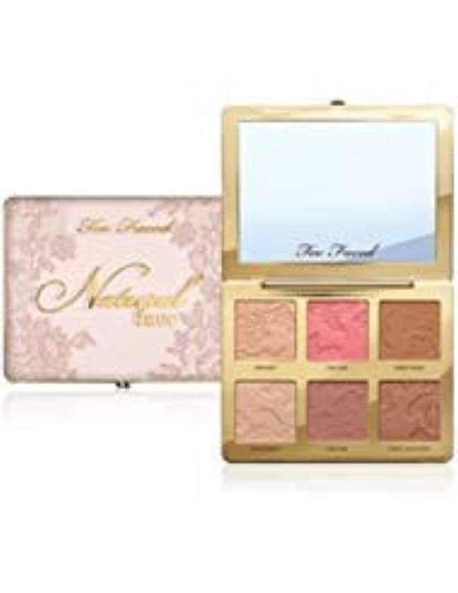 立ち向かう手順リースNatural Face Highlight, Blush, and Bronzing Veil Face Palette [並行輸入品]