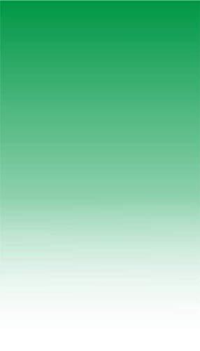 Quattroerre 1366 stickers voor motorfiets, groen