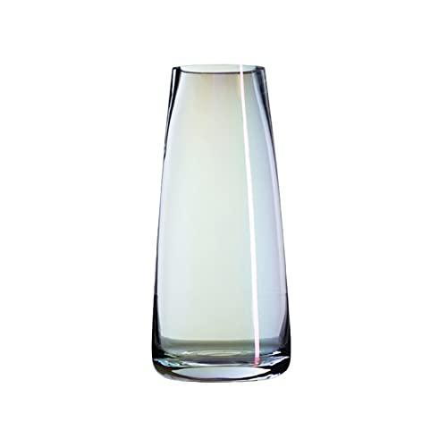 HI-vases Mini Jarrón De Vidrio, Hidroponía De La Botella De Cristal Transparente 22 * 6.5 * 9cm(Size:22 * 6.5 * 9CM)