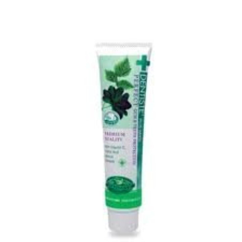 重々しい不当預言者Dentiste Night Time Active Whitening Toothpaste 100 G Thailand Product by Dentiste