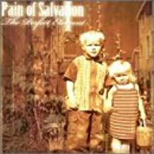 The Perfect Element Part 1 by Pain Of Salvation (2000-11-14)