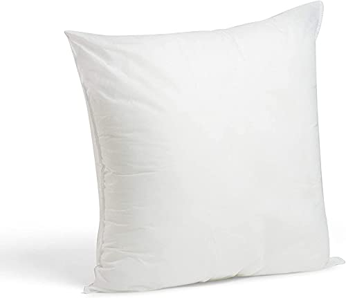 60cm x 60cm Cushion Pad Pillow Insert Inner, Hypoallergenic Polyester Cushions by Rohi (Set of 2 | 24' x 24')
