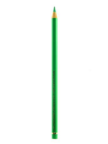 Lápis de Cor Polychromos Faber-Castell Avulso 2 Light Phthalo Green 162