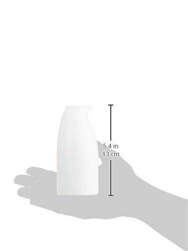 白山陶器『ペンギンPENGUIN半酒器セット波佐見焼』
