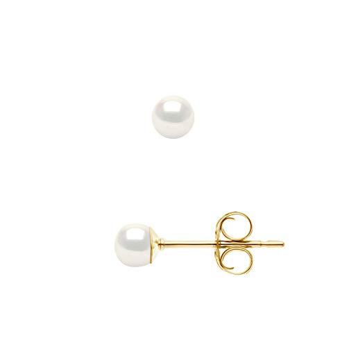 Pearls & Colors - Orecchini Vere Perle di Coltura di Acqua Dolce - Colore Bianco Naturale - Qualità AAA+ - diverse misure disponibili - Oro Giallo - Gioilli Donna