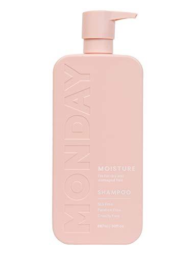 MONDAY HAIRCARE Moisture Shampoo 887ML Bulk Pack (Amazon Exclusive)