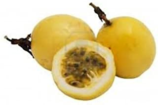Fresh Yellow Golden Passion Fruit (3lbs)