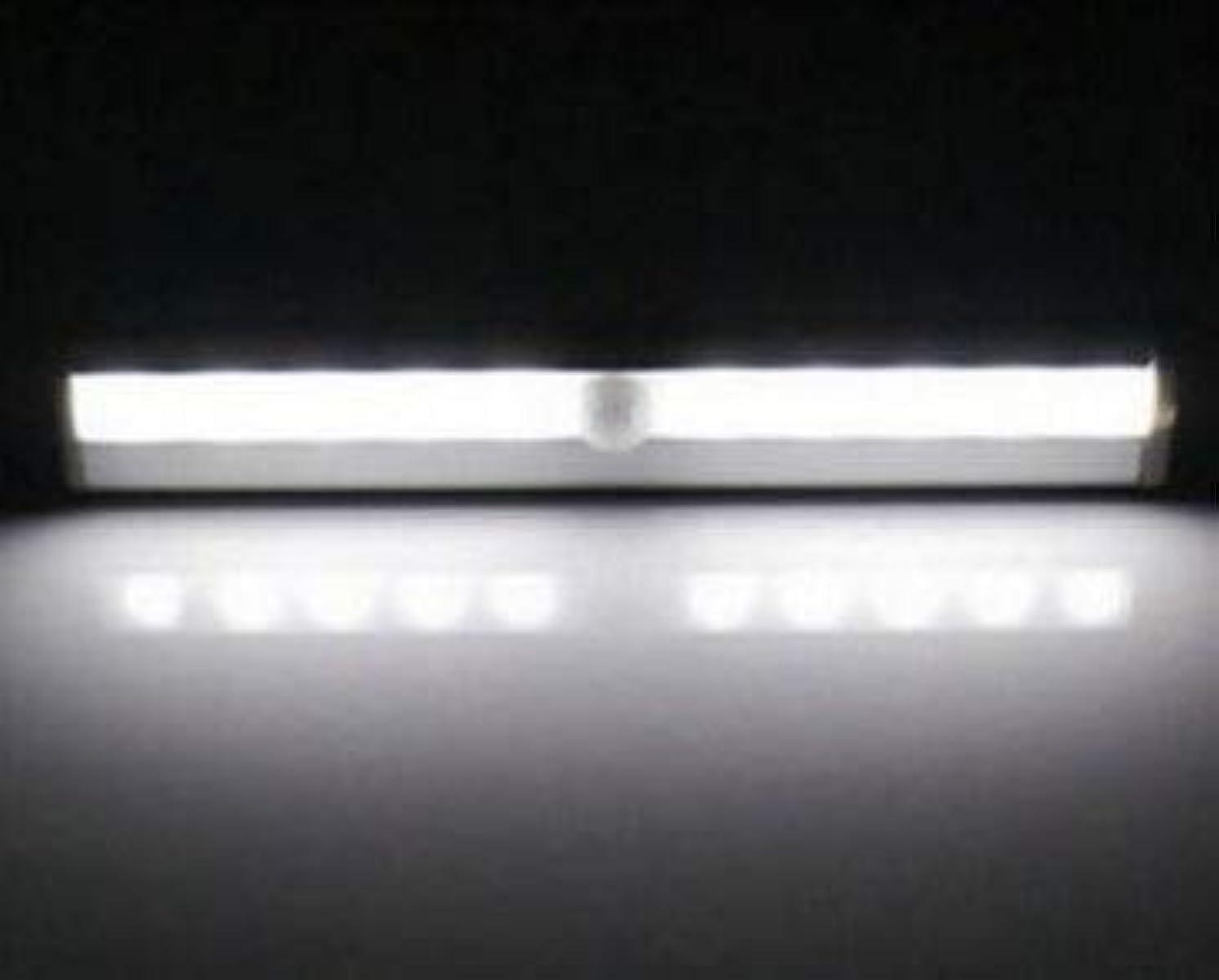 フェローシップ体ライバルGEMORE内閣人間の赤外線センサーランプ、廊下夜の光、光制御体誘導灯10LED充電式ワードローブ (Color : White light)