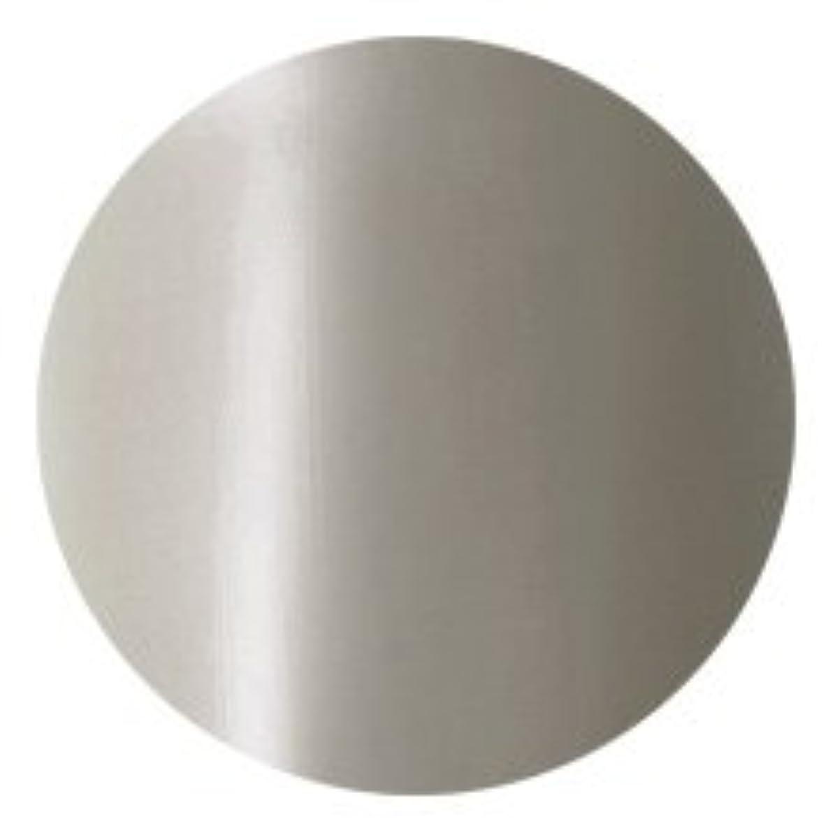 サーバ犠牲評決Fleurir Color Gel M40 アッシュグレー(tat100493)