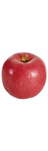 Fiebiger Floristik 12er Pack Kunstpflanze Apfel-Gala 7cm rot Dekoobst (9359161135500)
