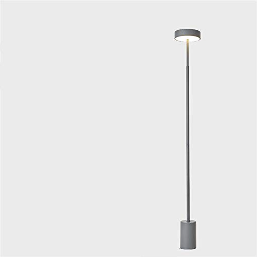 Minimalismo Minimalismo Lámparas de pie Nordic Metal LED Lámpara de pie libre para sala de estar Dormitorio Luminarie RC Dim Decor Light Lightures ( Body Color : Warm Light , Lampshade Color : Grey )