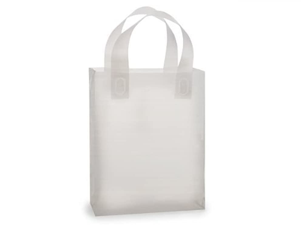 Clear Frosted Plastic Gift Bags with Handle 8
