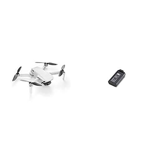 DJI Mavic Mini Drone Quadcopter UAV with 2.7K Camera Bundle with Extra Intelligent Battery (2 Batteries Total)