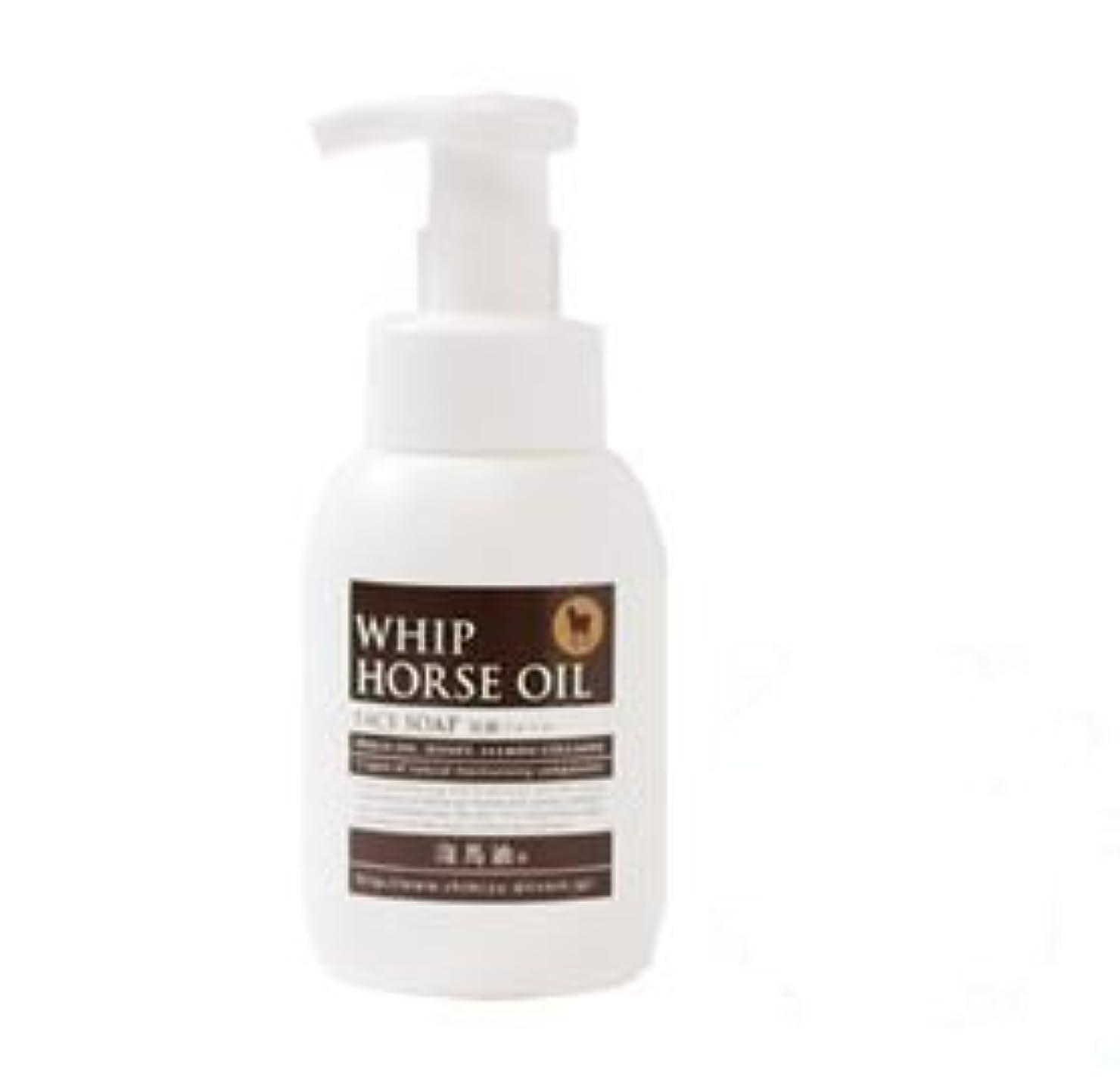 気質とまり木住人馬油配合洗顔フォーム 泡馬油タンク300ml