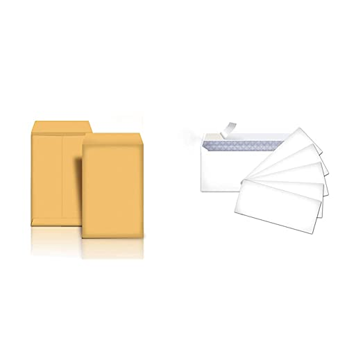 Amazon Basics Catalog Mailing Envelopes, Peel & Seal, 10x13 Inch, Brown Kraft, 250-Pack & #10 Security-Tinted Envelopes with Peel & Seal, White, 500-Pack