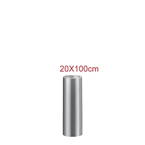 N\A Pegatinas de Coche, 10/20 / 30/40 / 50x100cm Rhino Skin Película Protectora Coche Papelera Pintura Pintura Pegatina Anti Scratch Clear Transparence Film Kit de Envoltura de automóviles