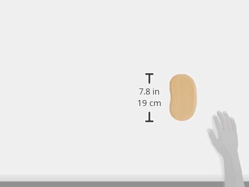 アイリスプラザ曲げわっぱ弁当箱豆型一段バンド付きナチュラル18×10×5cmBDH02A
