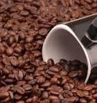 100% Pure Coffee Beans Review and Comparison