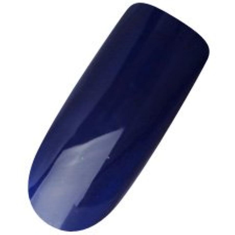 カードだます突っ込むDASHING DIVA(ダッシングディバ) ララジェル カラージェル 4g N―033M ブループリント
