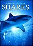 Sharks (Snapshot Picture Library Series)