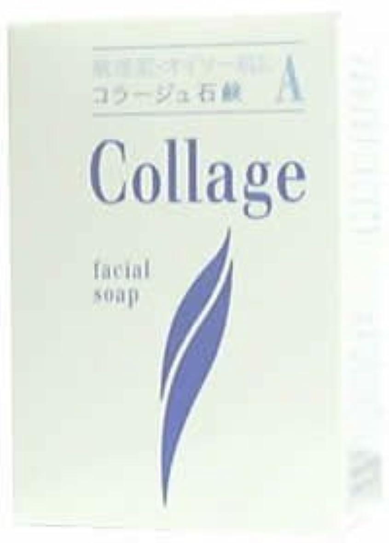 宿泊ご注意不振コラージュA脂性肌用石鹸100g×2 1342