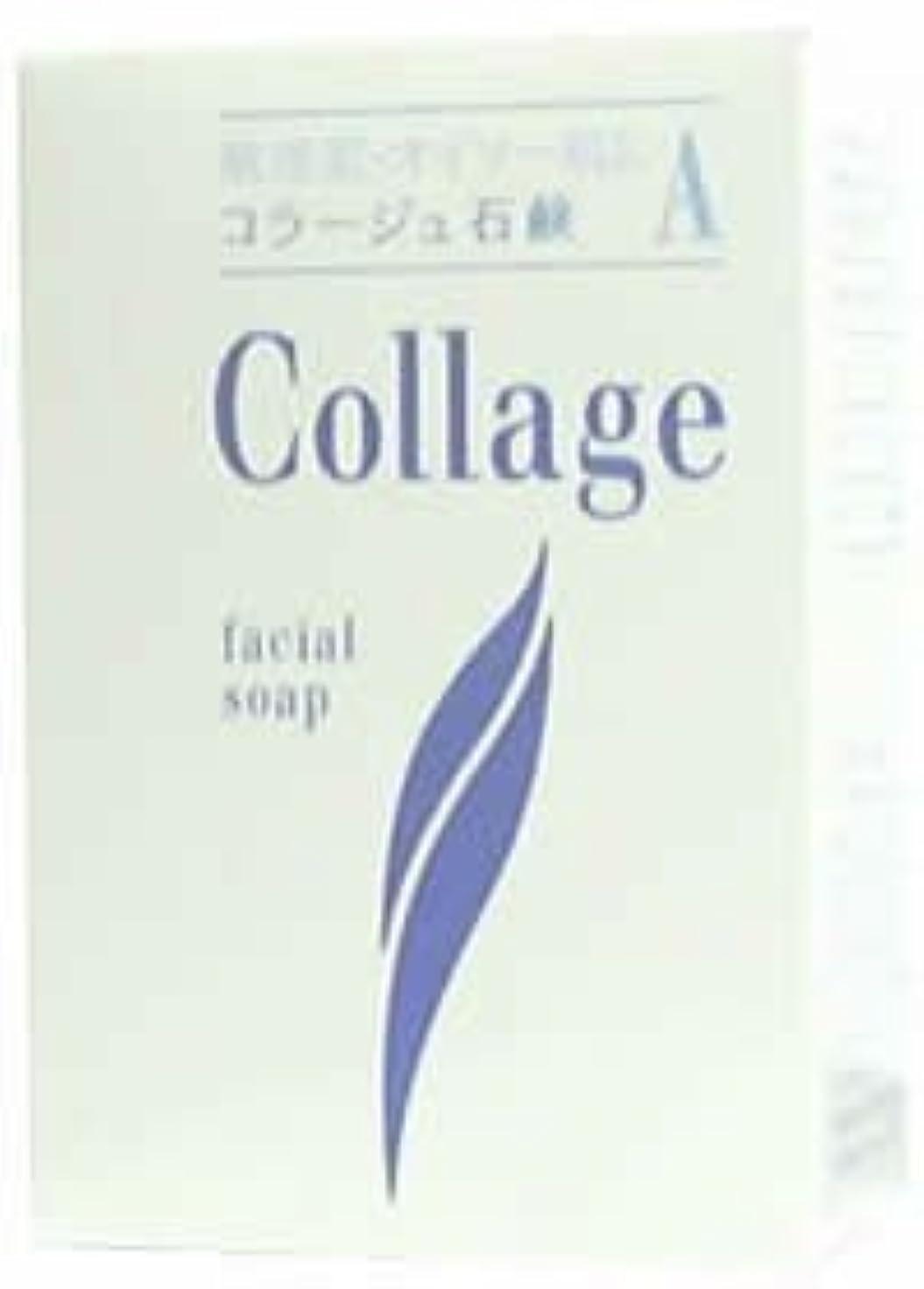認可地元喜びコラージュA脂性肌用石鹸100g×2 1342