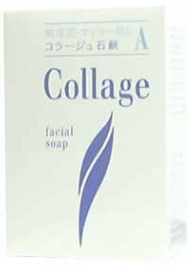 幸運カフェテリア私のコラージュA脂性肌用石鹸100g×2 1342