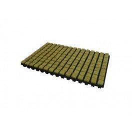 Plateau de laine de roche - 150 cubes de 2,5 x 2,5 cm