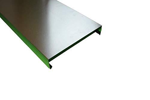 Mauerabdeckung 2 m lang Aluminium Natur 0,8 mm (klein)