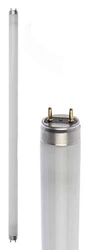 Osram Active DayWhite – Lampe (G13, Blanc, b)