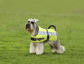 product image for American Pet Diner 100DFHV018 Flectalon Dog Jacket Hi-Viz 18 in.