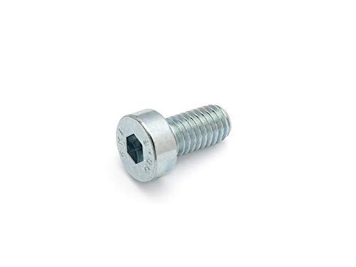 DIN 7984 - Tornillo cilíndrico con hexágono interior y cabeza baja, 8.8, galvanizado (VPE 100 unidades), M5x10, 1