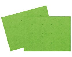 安寿 吸着すべり止めマット C グリーン 535-129 (アロン化成) (バスシ−ト)