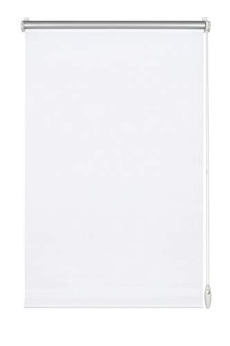 Gardinia Easyfix Tenda a Rullo Oscurante con Rivestimento Termico, Bianco, 40 x 150 cm