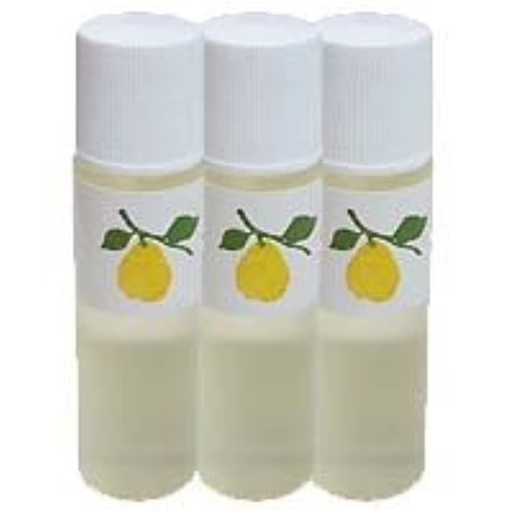 説明的想定するシェード花梨化粧水ミニ3本セット