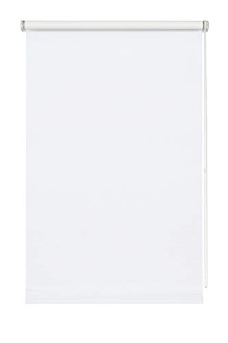 Wohnidee Estor Enrollable con luz Diurna para Fijar, Pegar o atornillar, Opaco, Todas Las Piezas de Montaje Incluidas, Tela, Blanco, 80 x 210