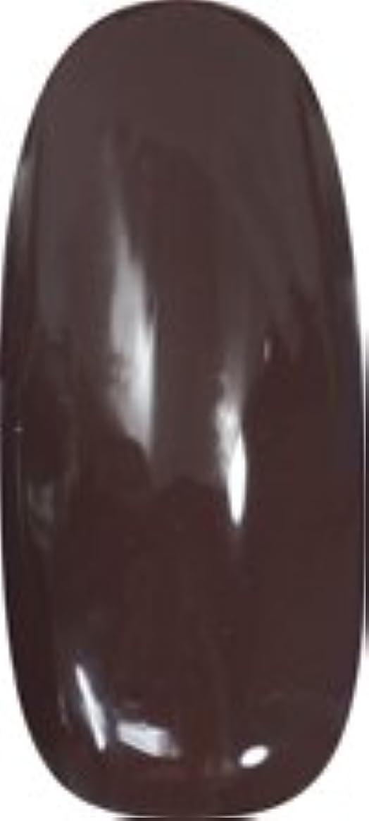 川圧縮された苦行★para gel(パラジェル) アートカラージェル 4g<BR>AR14 チョコ