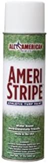 Ameri-Stripe White Athletic Field Marking Paint - 2 Case Pack (24 Cans)