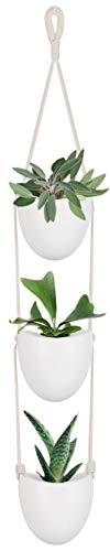 Mkouo cerámica Que cuelga plantador con 3 macetas suculentas Planta de Aire Titular decoración de la Pared