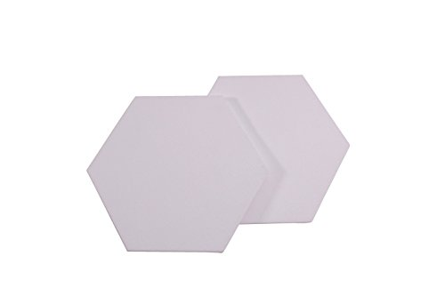 Masterpiece Canvas Concepts Hexagon, 10 in, Pack of 2